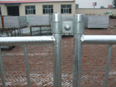 A clamp is connecting two round pipe Australia pool fence panels.
